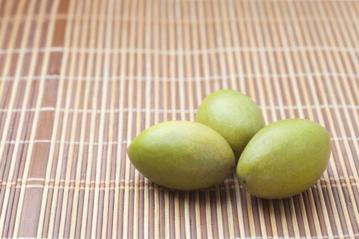 橄欖 かんらん