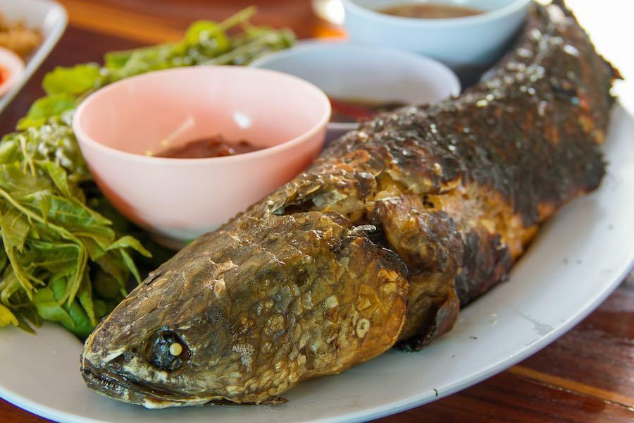 タイ料理:プラーチョンパオクルア(ปลาช่อนผาเกลือ)